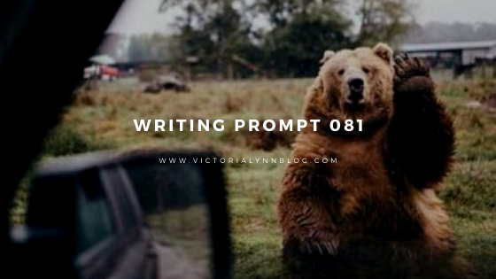 Writing Prompt 081